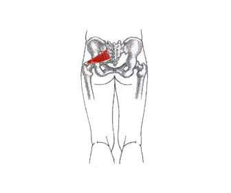 Izquierda ciática pierna hinchazón la de