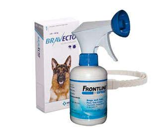 tratamiento para garrapatas en perros