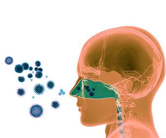 tratamiento rinitis alergica