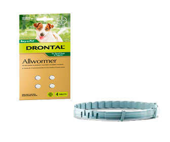 tratamiento para parasitos en perros