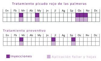 calendario para el tratamiento del picudo rojo calendario